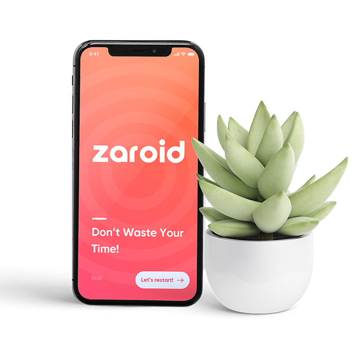 Zaroid singapore about webdevelopment services